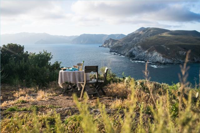 Toast to Catalina Tour