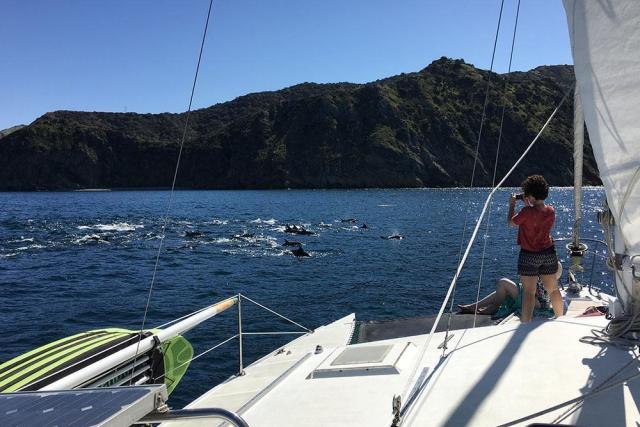 catalina-adventure-sailing-01472692869hV0.jpg