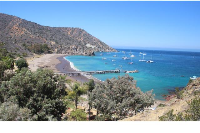 catalina-coastal-tours-fishing-014726928606Ew.jpg