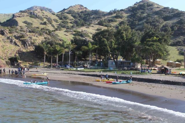 catalina-coastal-tours-fishing-01472692860Sh6.jpg
