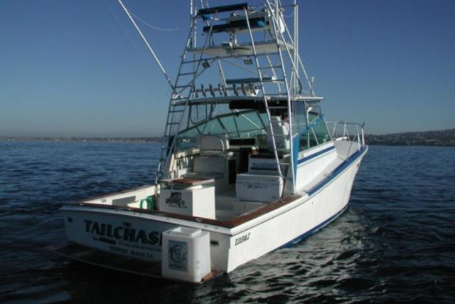 daveys-locker-sportfishing-whale-watching-01472692868sI2.jpg