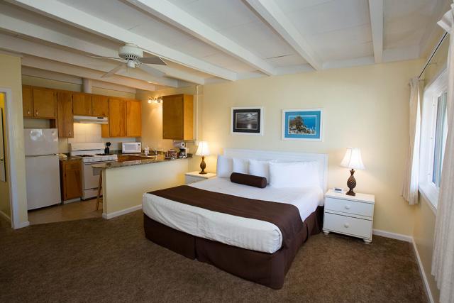El Terado Terrace Mini Suite