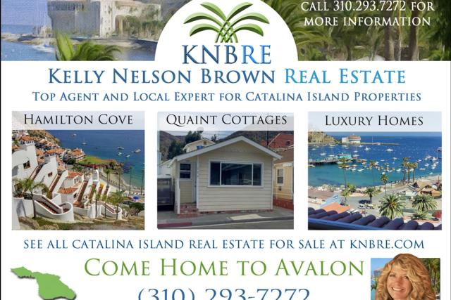 kelly-nelson-brown-real-estate-01481664371178.jpg