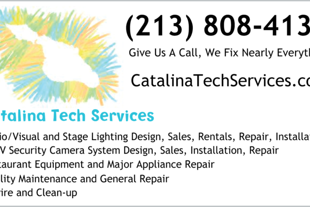 Catalina Tech Services Card