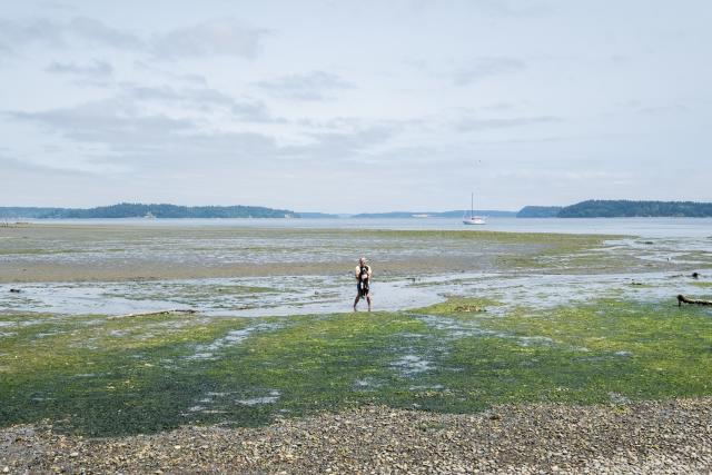 Person standing on  the shore by a lake in Olympia, WA
