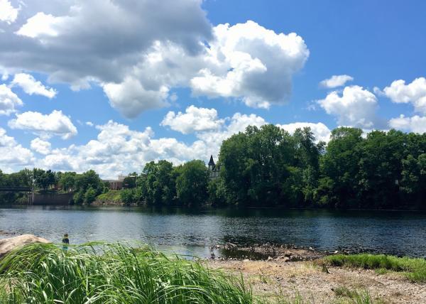 Phoenix Park River
