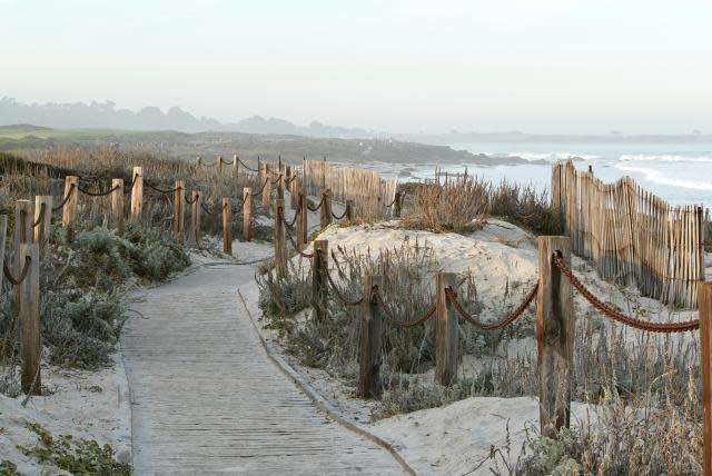 Asilomar Dunes