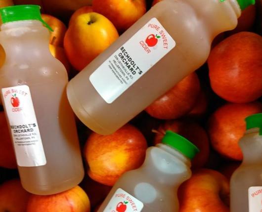 Apple Cider & Apples