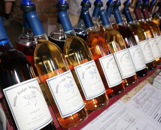 Spring Wine Festival 002