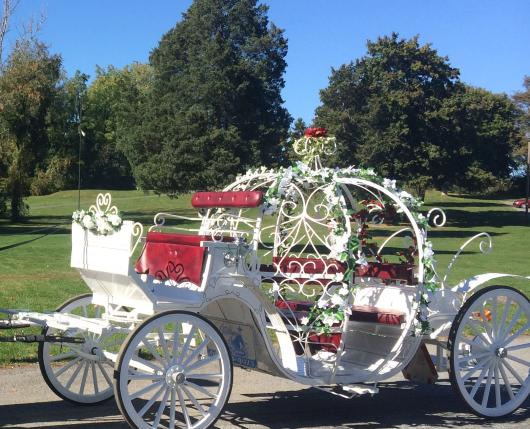 Cinderella Carriage2