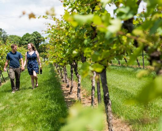 Lehigh Valley Wine Trail