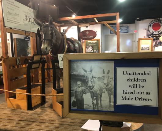 Museum Exhibit of Mule Stable
