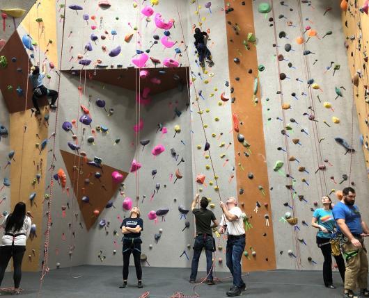 Climbing Gym