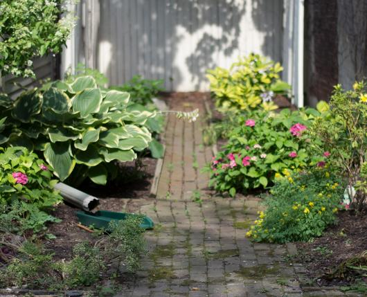 Kressler Garden