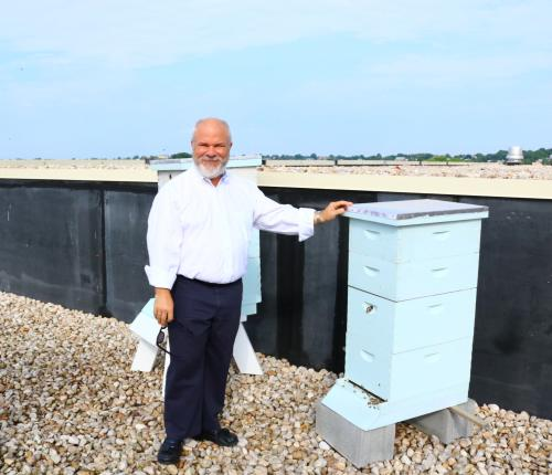 Mark and Bees on Grand Roof