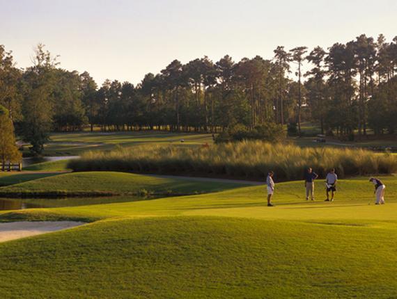 Tiger S Eye Golf Links