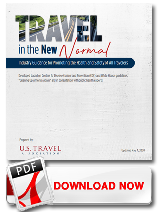 Travel in the New Normal PDF download