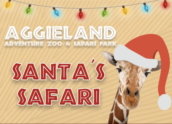 Santa's Safari 2019