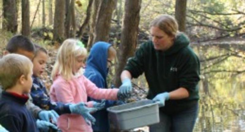 Stewardship Mornings at Harris Nature Center - Image