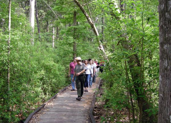 Big Thicket National Preserve Ranger Hike