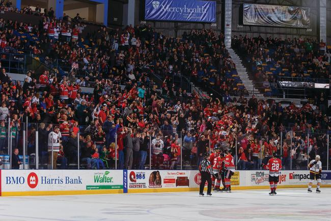 IceHogs fans celebrate