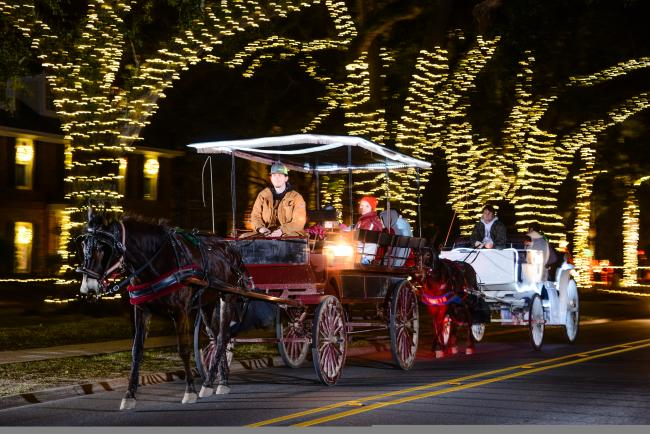 Christmas Lights on Shell Beach Drive with Horse Drawn Carriage