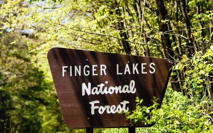 Finger Lakes National Forest