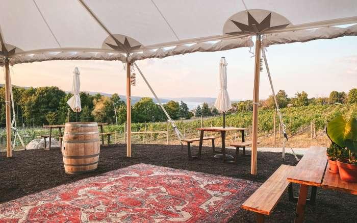 Living Roots Wine & Company