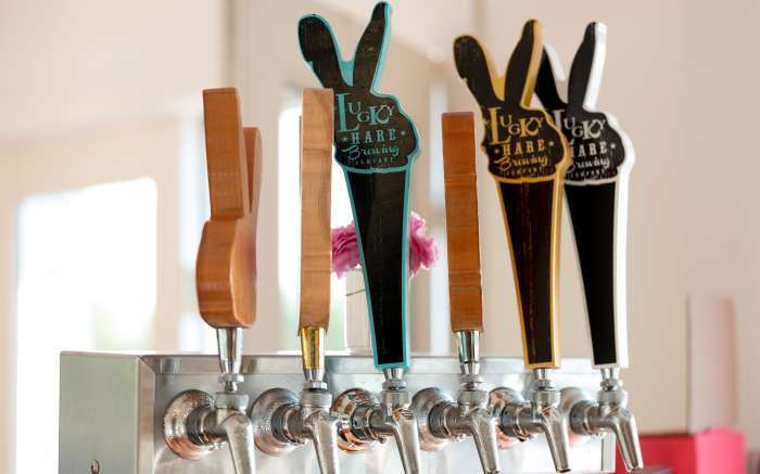 Lucky Hare tap line