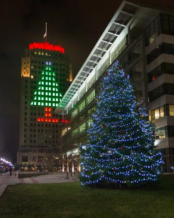 Allentown Christmas Tree 01 - Discover Lehigh Valley