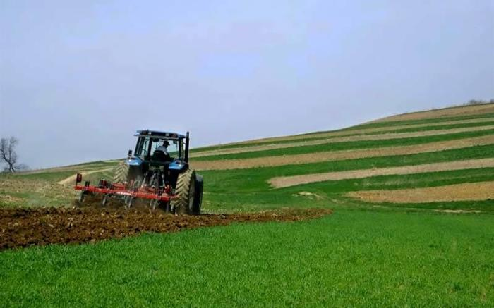 Schramm Farms & Orchards