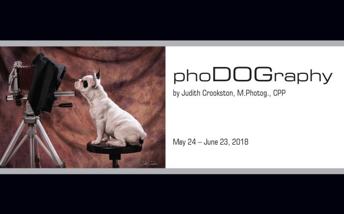 PhoDOGraphy Exhibit