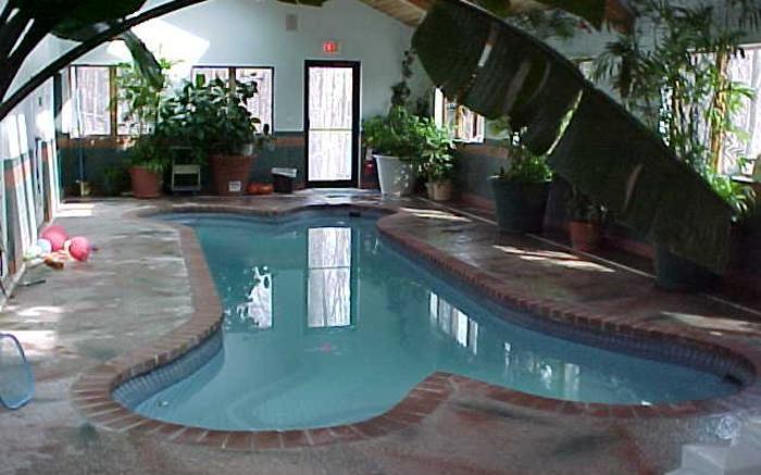 Cozy Inn Pet Resort 4