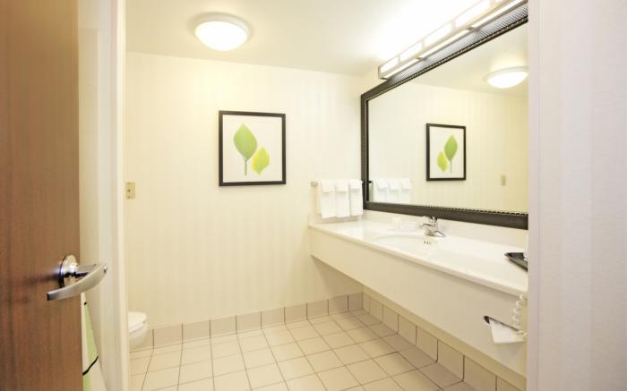 Executive King Suite - bathroom