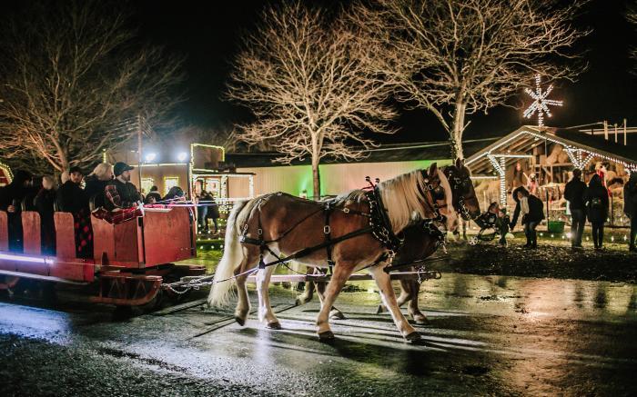 A Sleigh Ride thru Christmas Village
