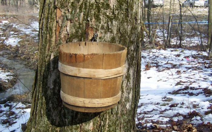 Somerset County Maple Producers