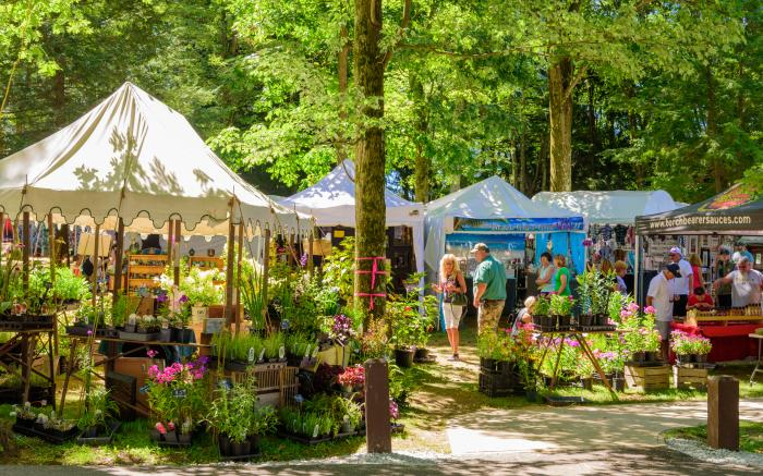 Artist Market in Pine Area