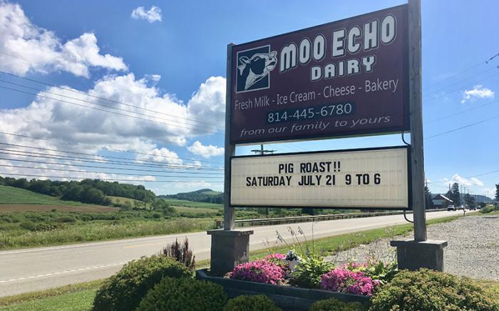 Moo Echo Dairy