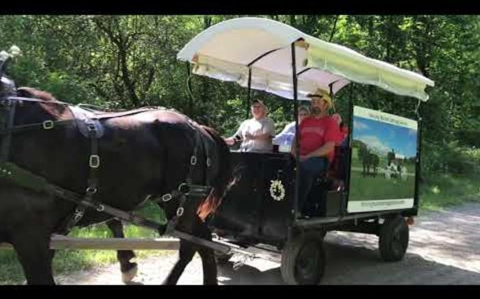 Wagon rides in the Laurel Highlands!