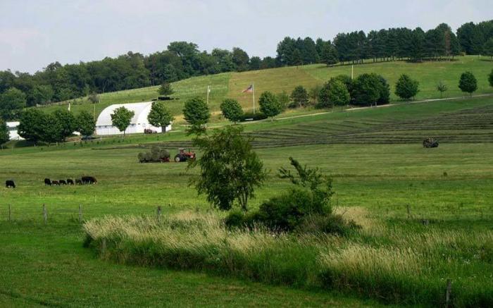 Friendship Farms