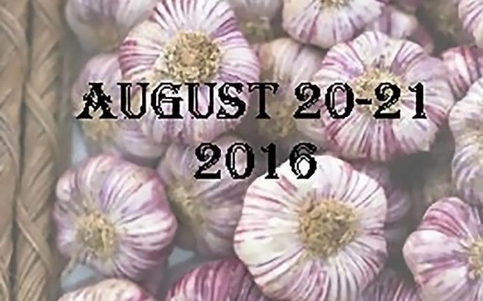 Garlic Festival picture