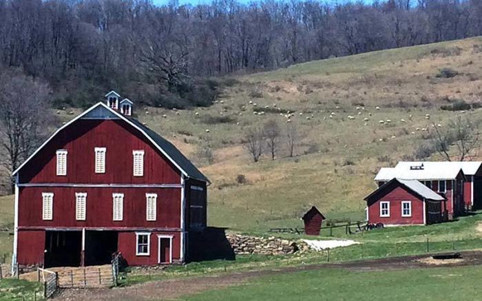 Shepherd's Farm Restaurant & Ice Cream Shoppe