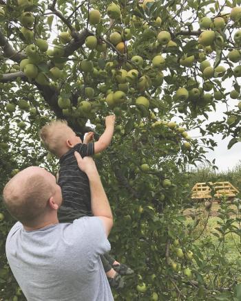 Beasley's u-pick apples