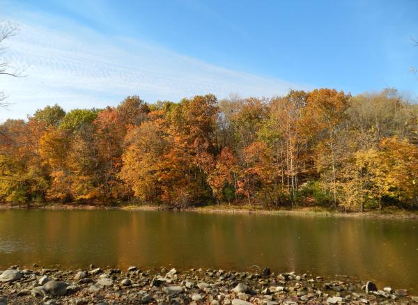 Scioto River in Autumn