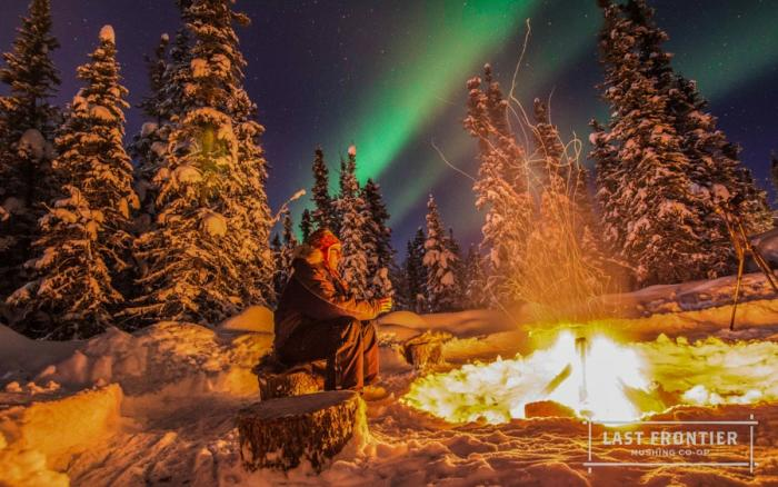 Last Frontier Mushing Co-Op | Northern Lights Tour
