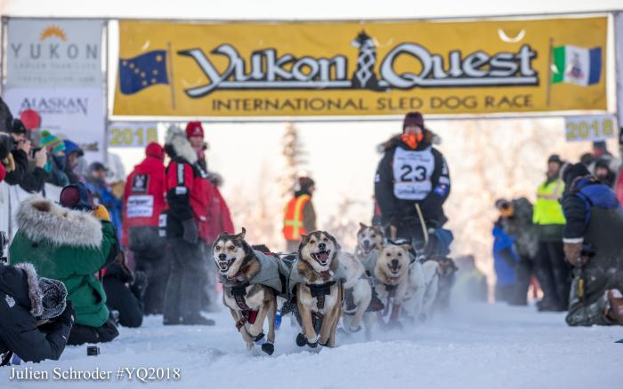Yukon Quest Sled Dog Race Mushing
