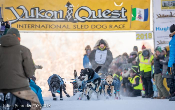 Yukon Quest Banner posted over a sled dog team pulling a musher at start of a race in sub-zero temps with spectators on the sidelines