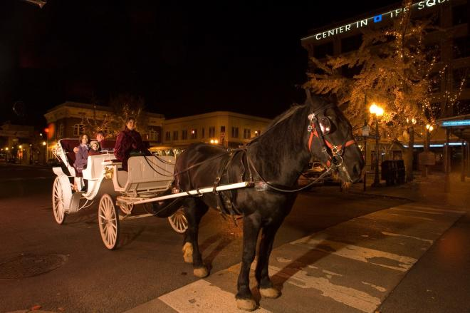 A family enjoying a carriage ride during Dickens of a Christmas in downtown Roanoke