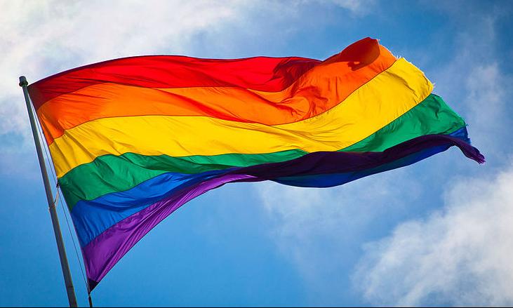 Ypsi Pride Flag