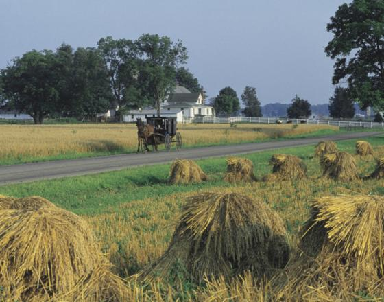 Visitors Love Country Road Experiences Along the Heritage Trail